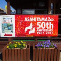 【開園50周年】旭山動物園を娘流に楽しむ。