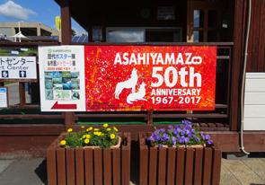 【開園50周年】旭山動物園へ遊びに行ってきました。4歳の娘流に楽しんできた事。