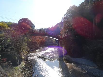 【紅葉狩り】マイナスイオン効果抜群の癒しスポット!養老渓谷で沢山のパワーを貰ってきたよ。
