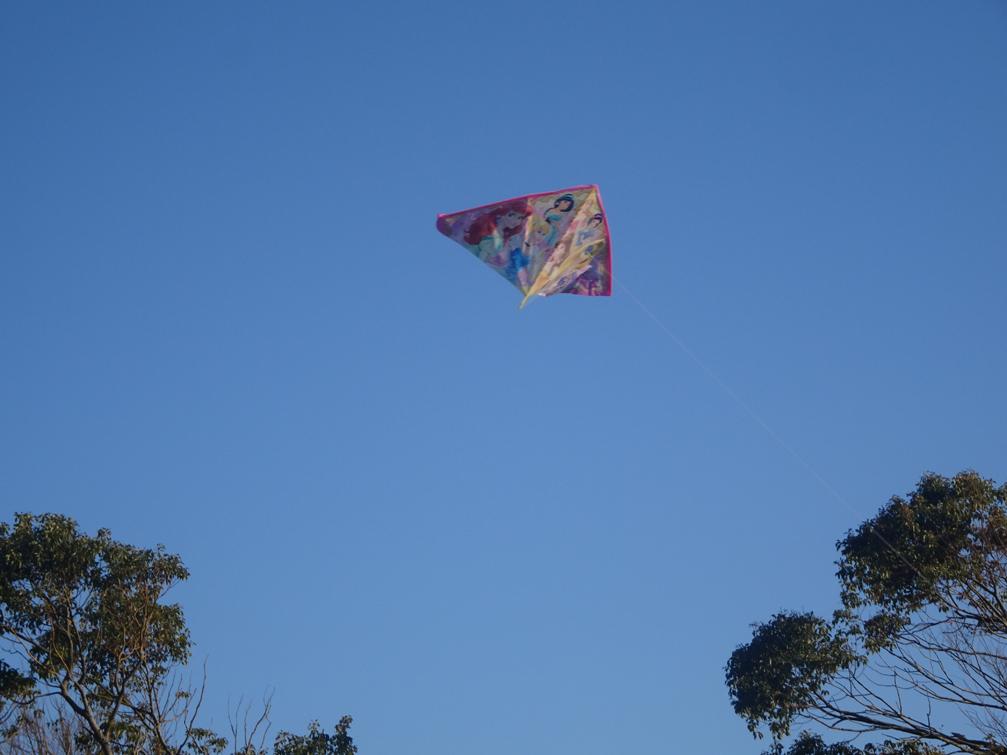 初ジョグと凧揚げ。