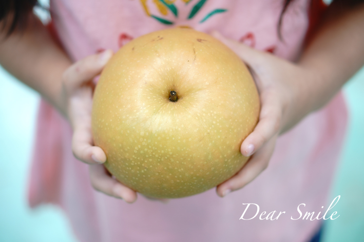 梨狩りへ行ったらまさかのトンボ帰り。美味しい梨を買ってきました。【2020年】
